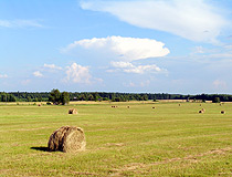 Harvesting of hay in Vladimir oblast