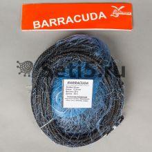 Сеть Барракуда
