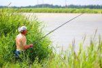 Кострома платная рыбалка – Платная рыбалка в Костромской области, платные пруды Костромы