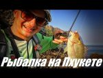 Рыбалка в тайланде пхукет с берега – В Тайланд со спиннингом / Блог им. Snur99Snur99 / Fishing Fun